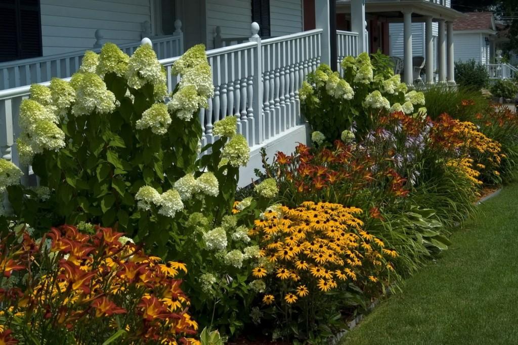 Многолетние цветы сажаем осенью 18