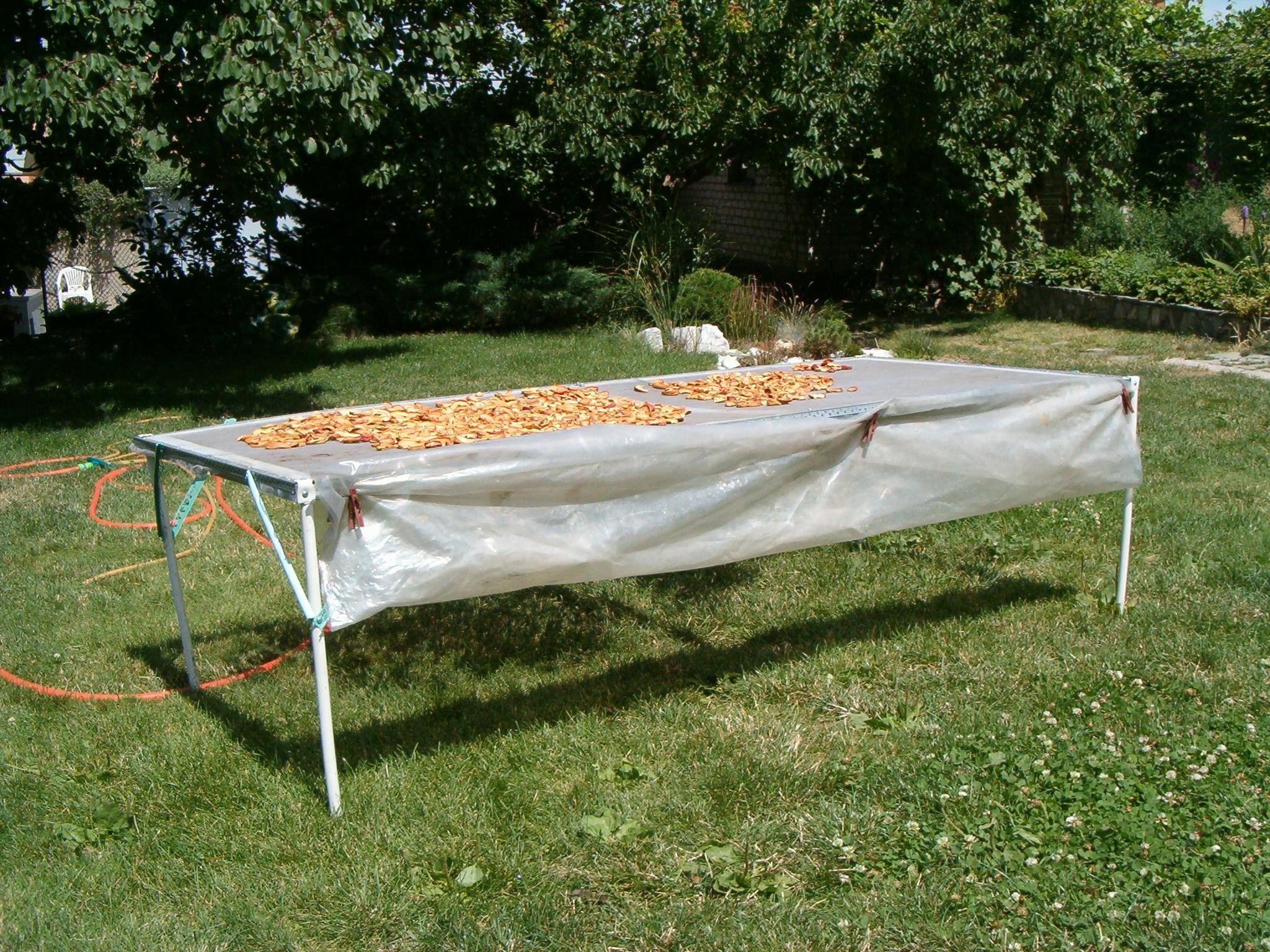 Сушилка для овощей и фруктов своими руками фото 16