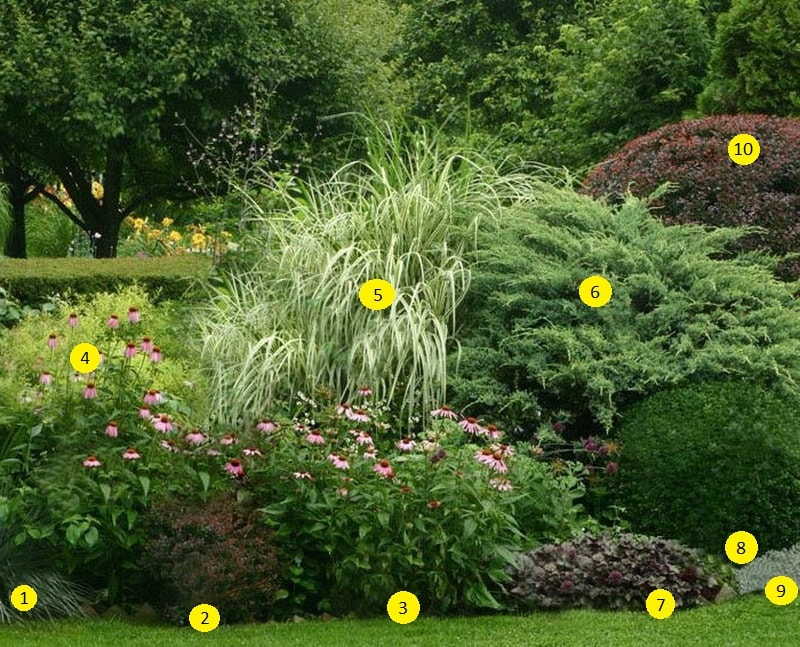 Виды садов в ландшафтном дизайне
