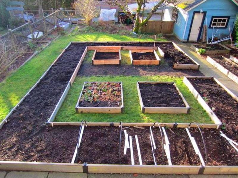 Схема огорода 4 сотки где что сажать фото 74