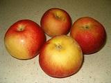 сорта яблонь для интенсивного сада