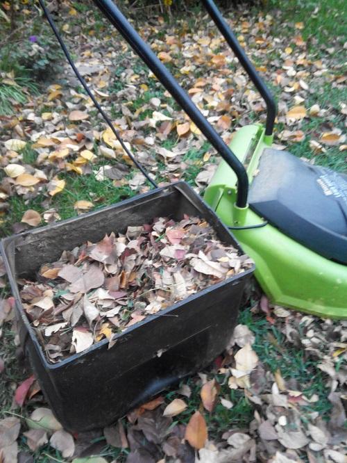 использование листового опада в качестве удобрения