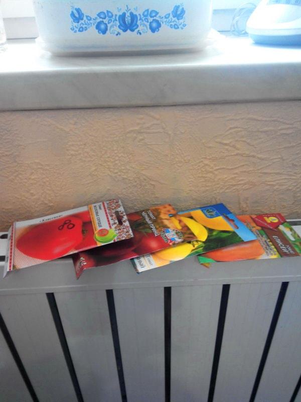 Прогревание семян томатов как способ подготовки к посадке