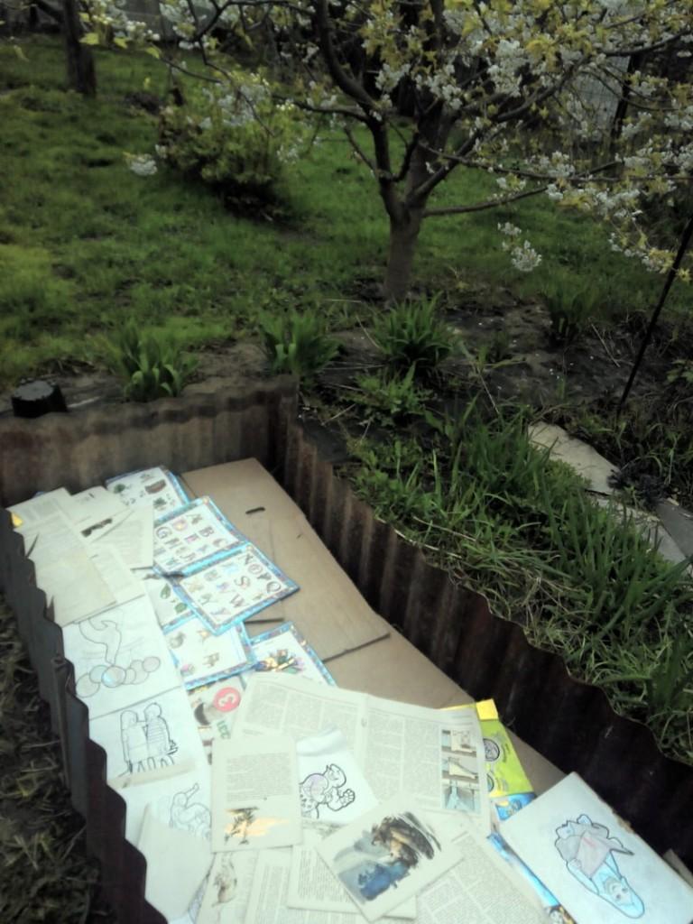 севооборот овощных культур на огороде дачном участке