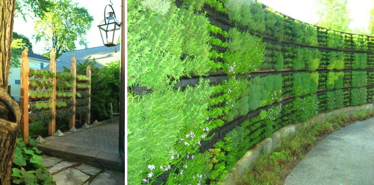 идеи садового забора