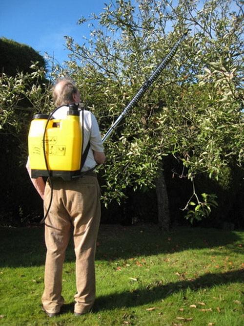 Обработка деревьев осенью Опрыскивание деревьев осенью