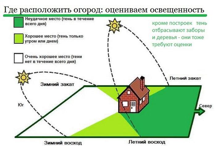 чтобы на садовом участке не было мха, надо правильно расплянировать посадки и застройки