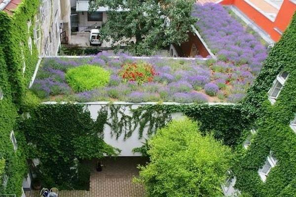 экология квартиры снаружи