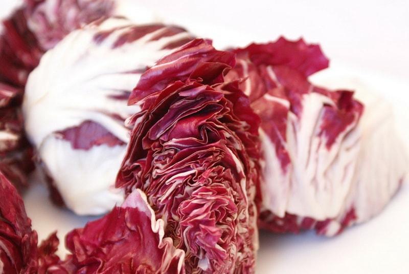 цикорий салатный Радиччио