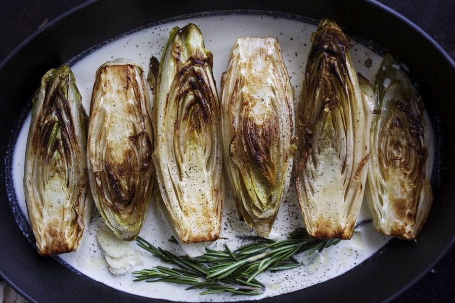 цикорий салатный фото