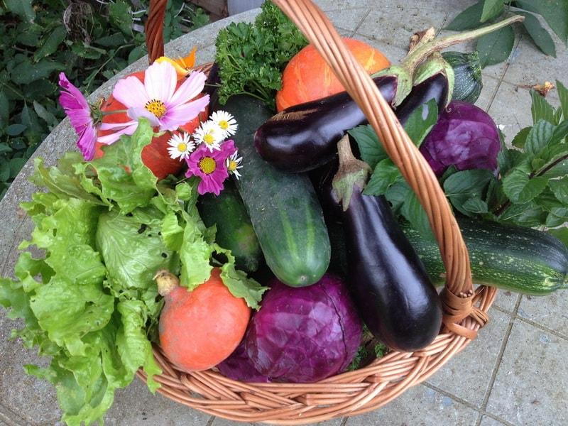 принципы органического земледелия