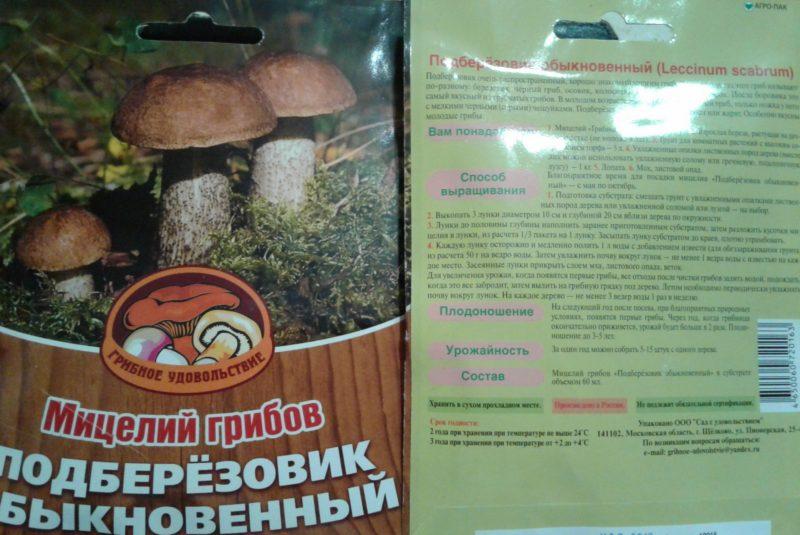 мицелий грибов: как выращивать на даче и в огороде
