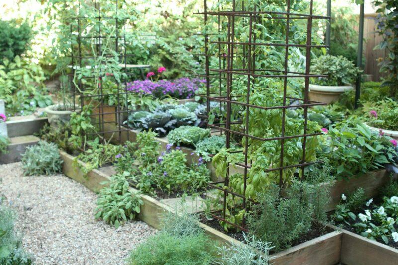 уютный огород