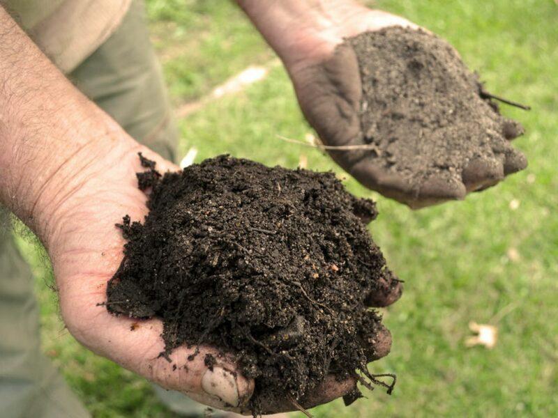 обогащение почвы на даче